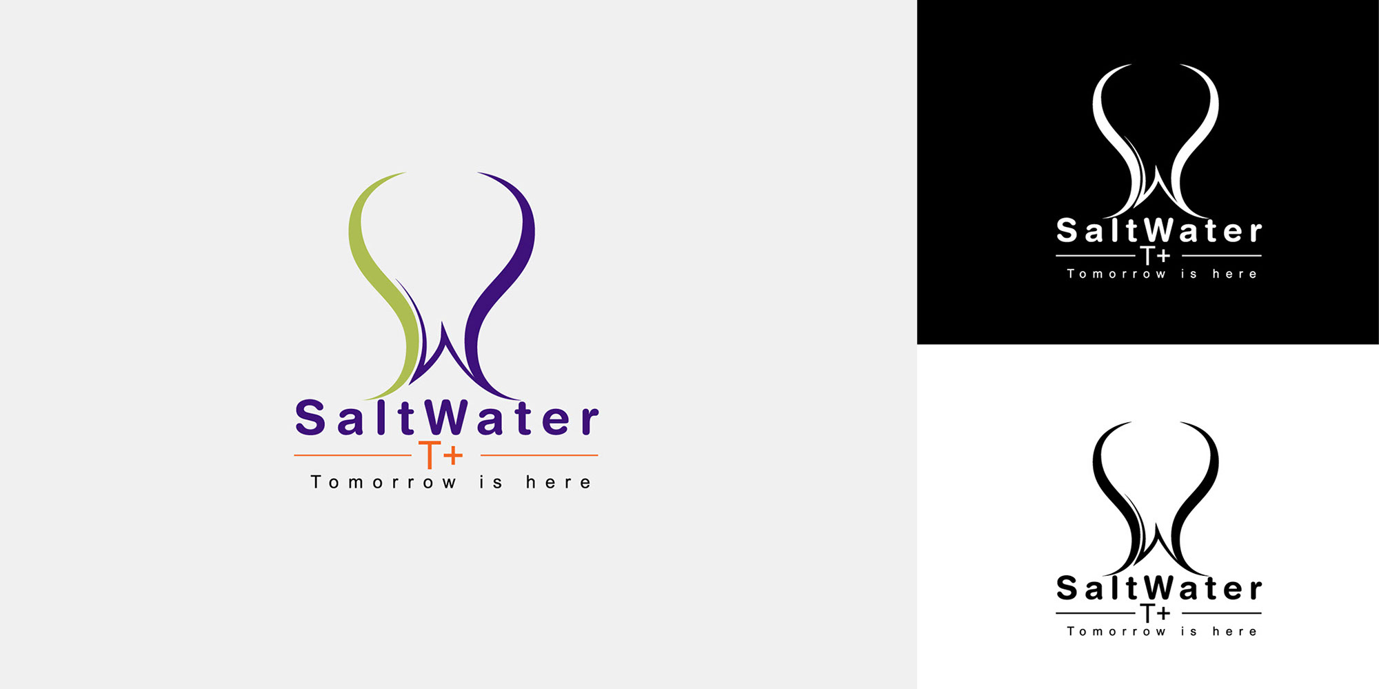 Saltwater logo by XENON Advertising